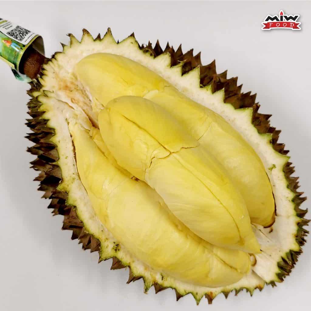 1 0 1024x1024 - แนะนำทุเรียนป่าละอู (Pala-u-durian) ทุเรียนหมอนทอง ที่ให้รสหวาน เนื้อหนาเนียนละเอียด