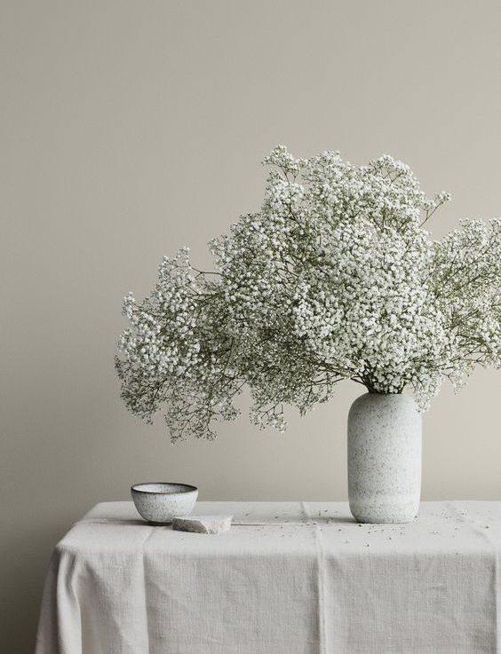 Gypso 04 e1592549091434 - ความหมายของดอกไม้แต่ละชนิด ที่นิยมนำมาจัดใส่แจกัน