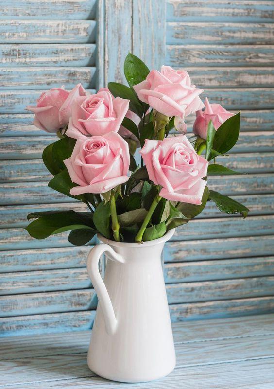 Rose 01 - ความหมายของดอกไม้แต่ละชนิด ที่นิยมนำมาจัดใส่แจกัน