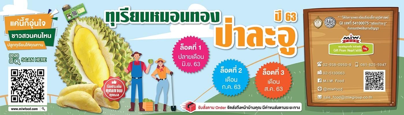 Web Food - แนะนำทุเรียนป่าละอู (Pala-u-durian) ทุเรียนหมอนทอง ที่ให้รสหวาน เนื้อหนาเนียนละเอียด