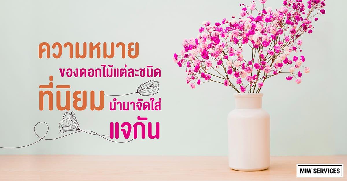 Website MIWServices Popular flowers to put in a vase 01 - ความหมายของดอกไม้แต่ละชนิด ที่นิยมนำมาจัดใส่แจกัน
