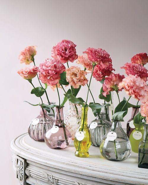 carnation 01 - ความหมายของดอกไม้แต่ละชนิด ที่นิยมนำมาจัดใส่แจกัน