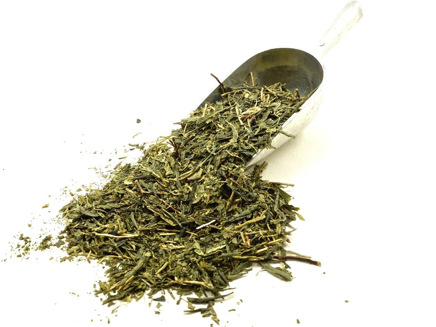 green tea 04 - ประเภทของชาเขียวมีอะไรบ้าง ที่คนชอบดื่มชาควรรู้